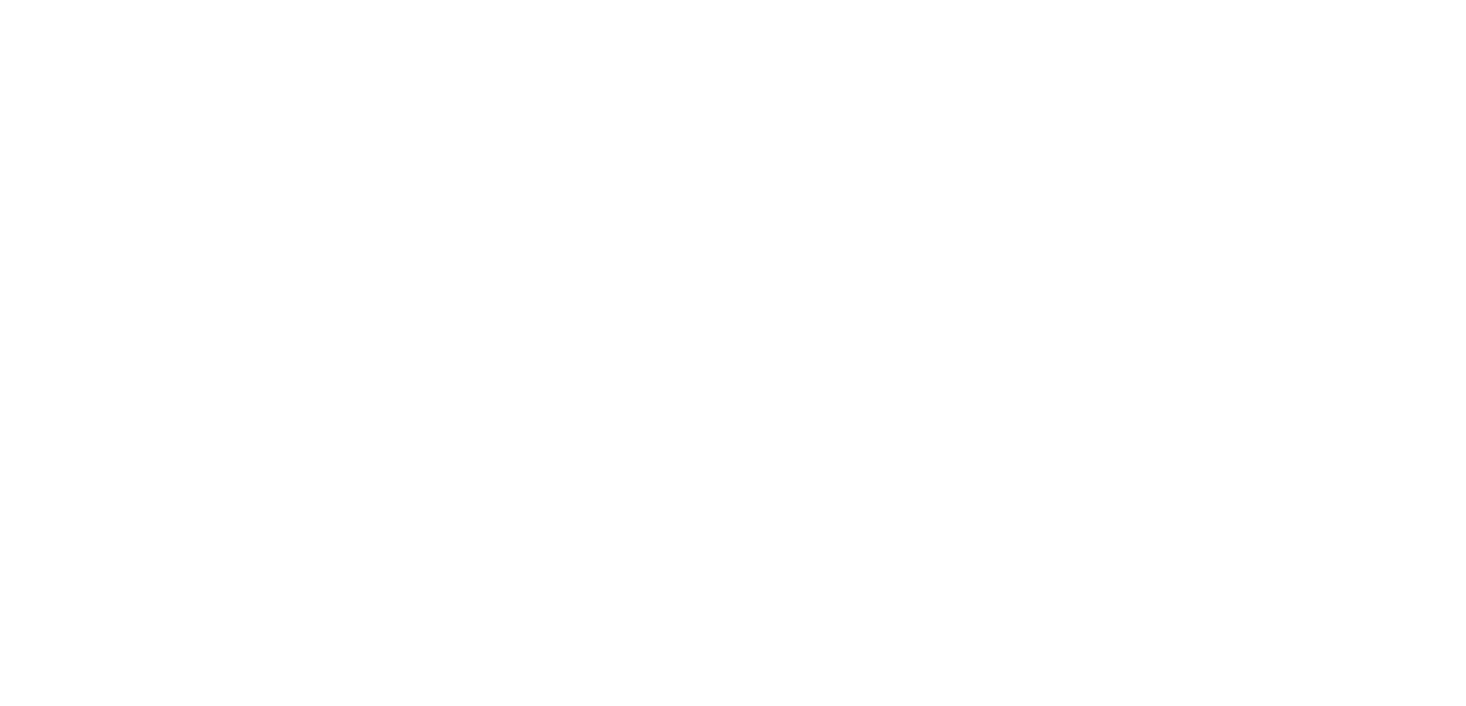 HIGH TECH. BIG FUN. GREAT SMILES. Home page text